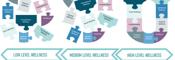 Publication of Caregiver Wellness U Model